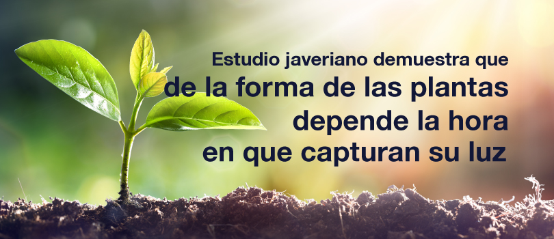 Frontiers in Plant Science javeriana